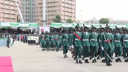 Find out about Nigerian Army ranks and salaries