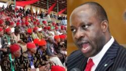 Professor Soludo, Ohaneze Ndigbo prescribe 6-year single tenure, 6 VPs and 1 president for Nigeria