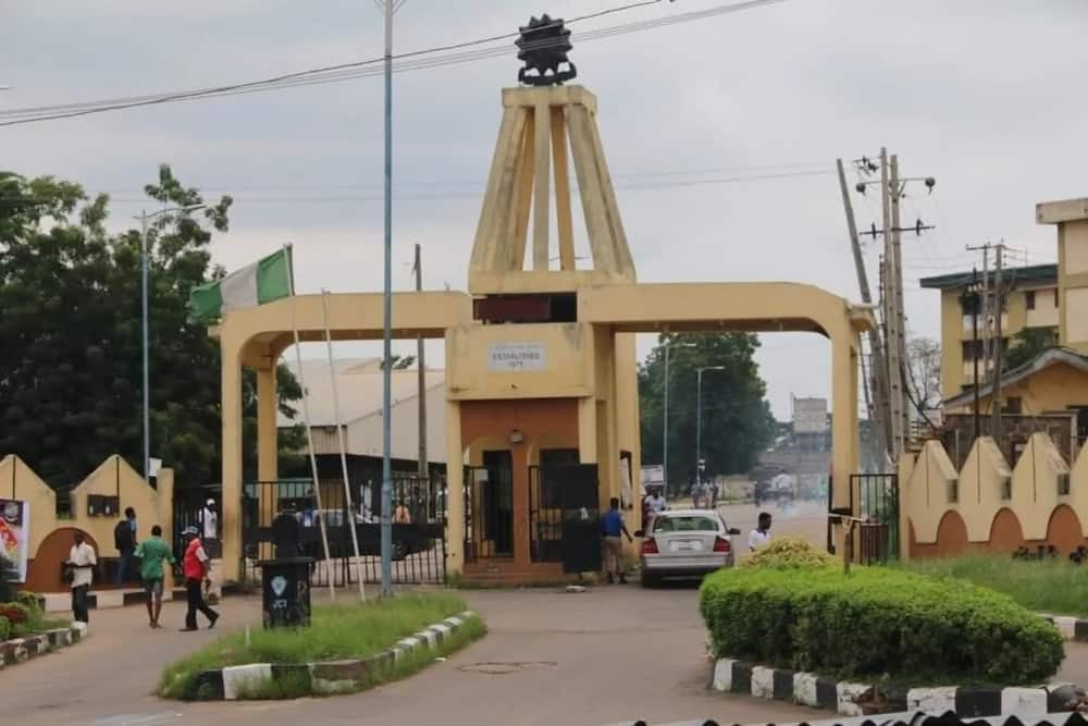 Best Polytechnics In Nigeria And Courses Offered In 2018 Updated Legit Ng