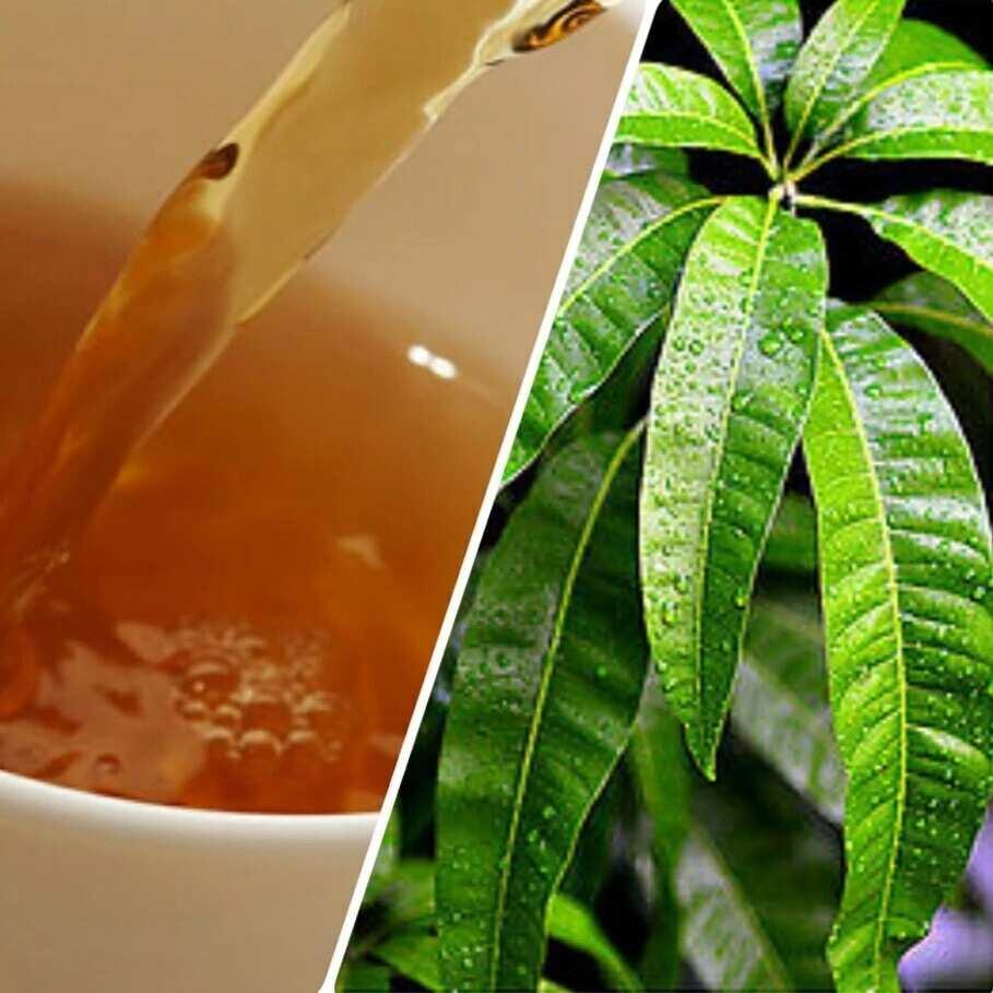 Mango leaves tea