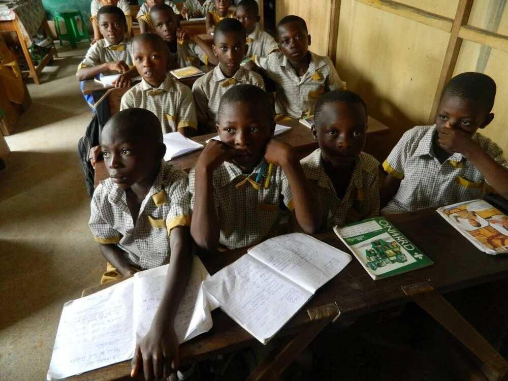civic education schools