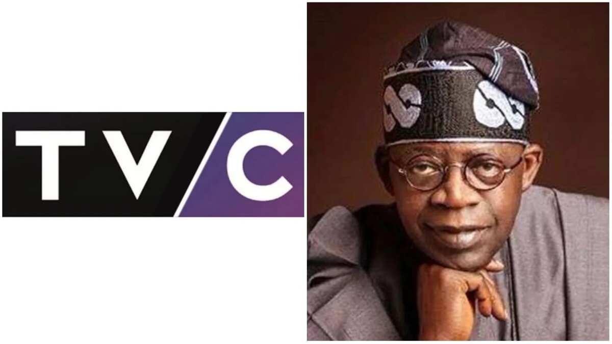 Who owns TVC Nigeria? ▷ Legit ng