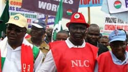NLC declares January 8 day of nationwide protest over minimum wage delay