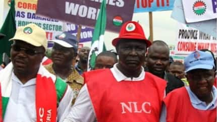 No minimum wage, no work from November 6 - Labour