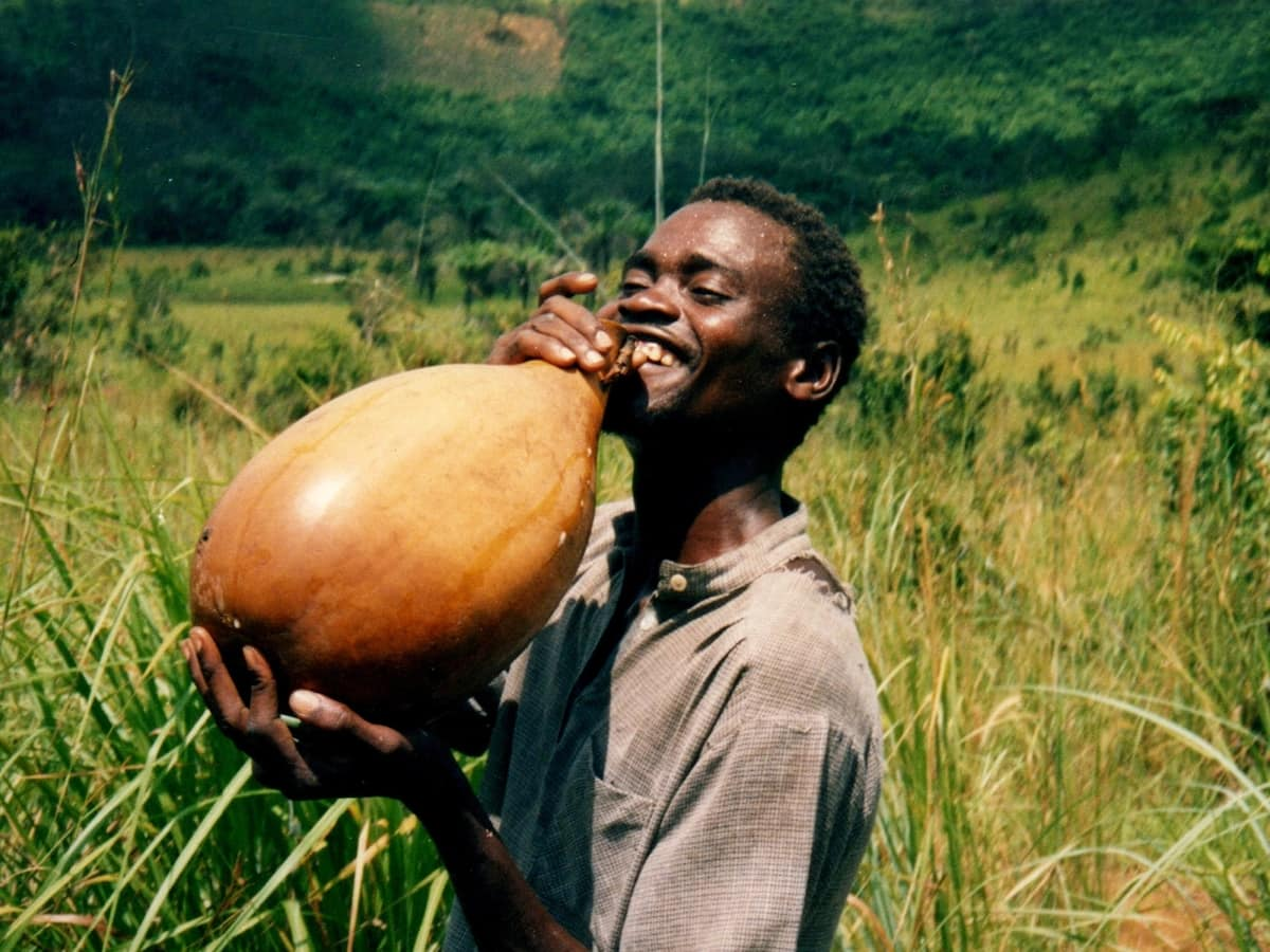 Coconut palm wine benefits for our health