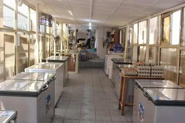 challenges of frozen food business in nigeria