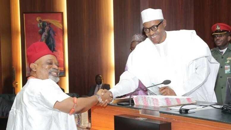 A matsayina na likita, zan iya bada tabbacin cewa Buhari ya fi kashi 80 na yan Nigeria koshin lafiya - Ngige