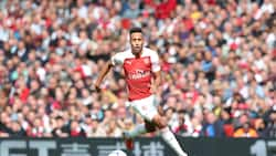 Arsenal superstar vows to leave club if they hire Mikel Arteta as new manager
