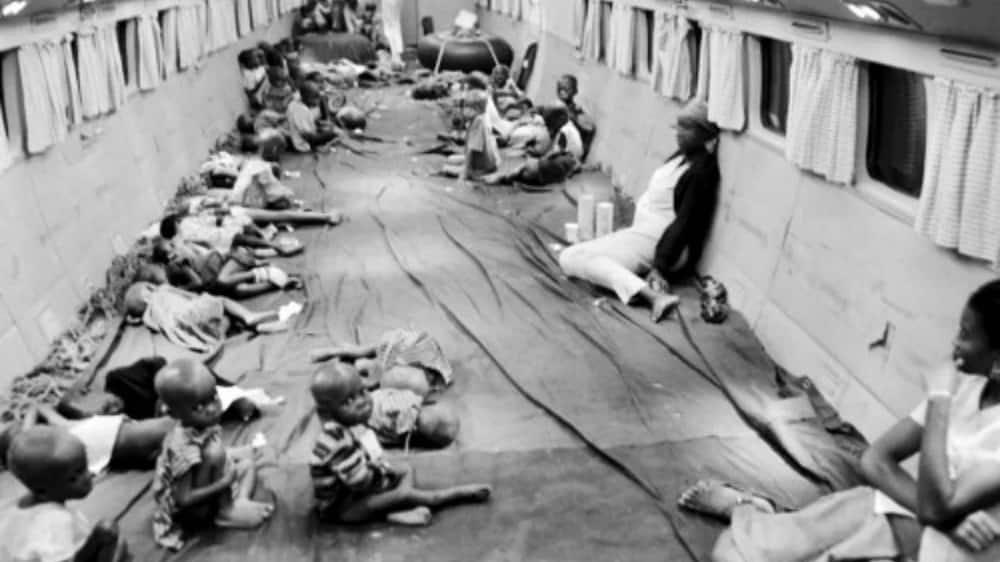 """In the photo, Biafran children can be seen sitting in a plane chartered by the International Red Cross (ICRC) and humanitarian organisation """"Terre des Hommes"""""""