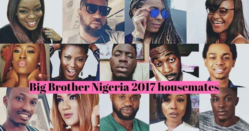 Big Brother Nigeria 2017 housemates