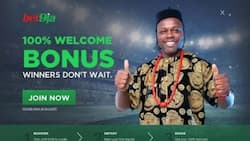 Bet9ja betsjip: detailed guise on how to check it