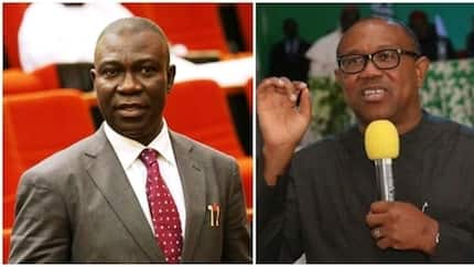 Reason for Ekweremadu's threat to leave PDP reportedly revealed