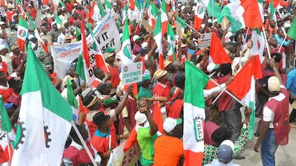 Panic heightens as Labour issues fresh ultimatum to FG over N30,000 minimum wage
