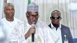 Collect cash gifts but vote credible candidates in 2019 - Ahmed Makarfi tells Nigerians