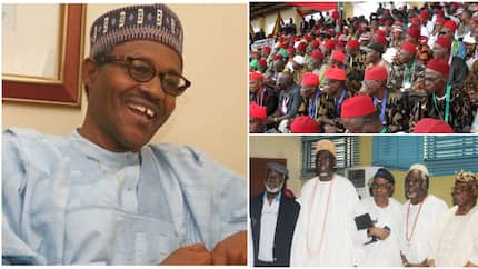 Southeast vs southwest: Who really benefits from a Buhari victory in 2019? by Buchi Obichie (Opinion)