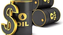 Under Goodluck Jonathan, Nigeria lost 1.08 million of crude oil in 2014 (Infographics)