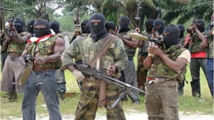You are our enemies - Niger Deltan militants threaten to blow up homes of NASS members from the region over budget cut, hit Jonathan