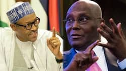 Buhari will defeat Atiku, other opponents easily - APC chieftain