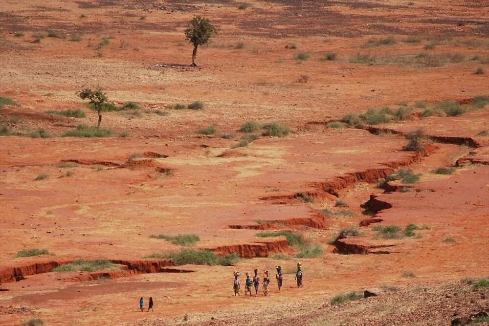 Which desert's edge is found at Nigeria's northernmost borderland? The Sahel region's problem is an urgent issue in Nigeria.