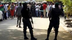 IPOB: Nigeria police arrests 140 members of pro-Biafra group in Nsukka
