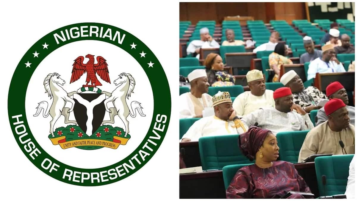 Image result for images of Nigeria House of Representatives