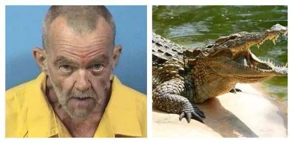 Police Arrest Man For Raping, Torturing Crocodile