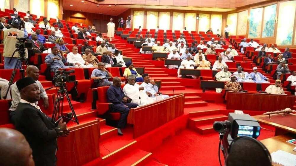 How many senators do we have in Nigeria? ▷ Legit.ng