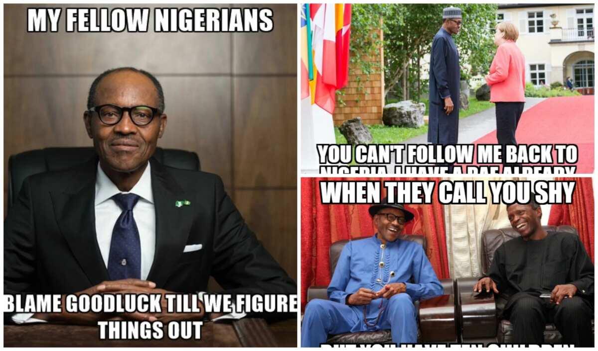 20 most hilarious buhari memes you have ever seen ▷ legit ng