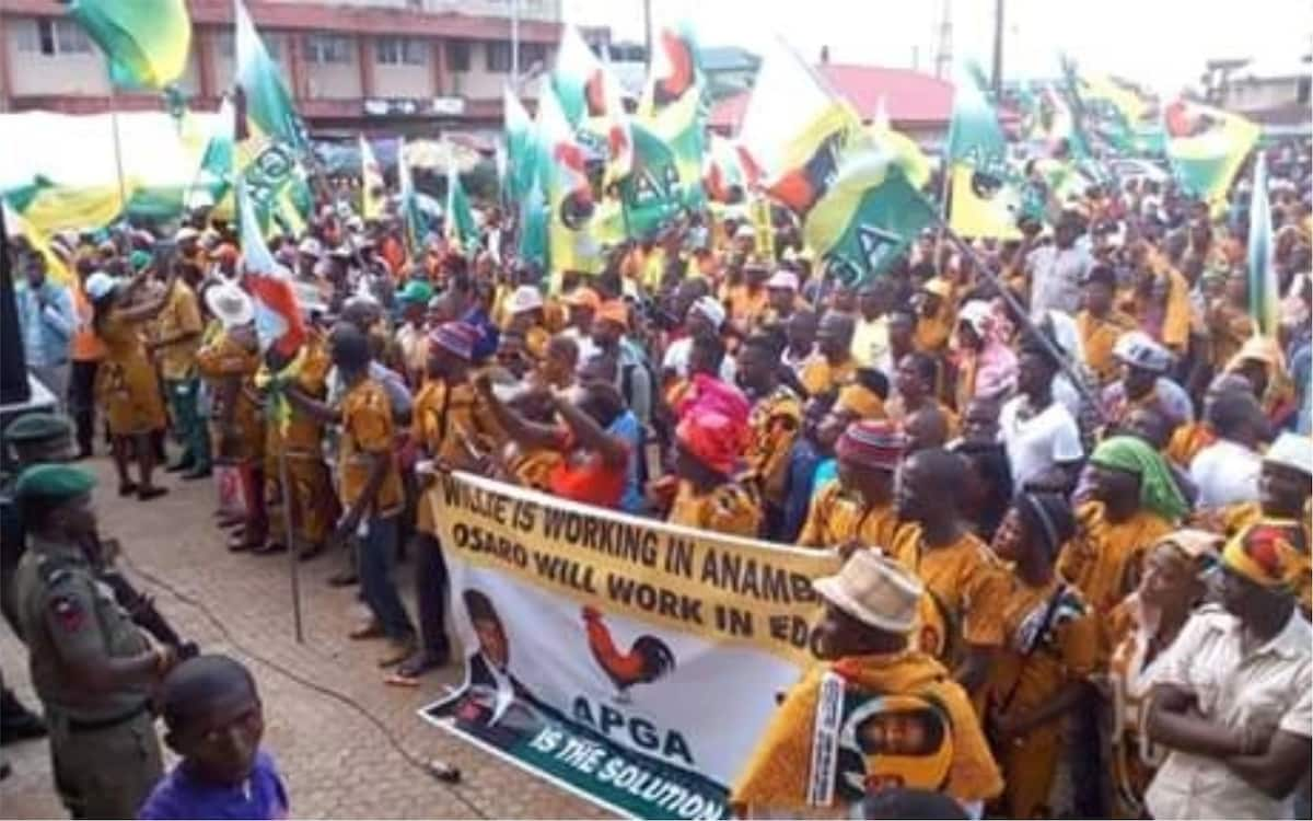 Court nullifies APGA senatorial primary for Anambra south