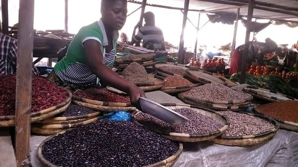 african legumes