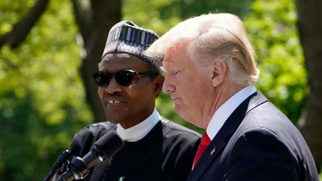 Dalilin da yasa fadar shugaban kasa ba zata yi raddi ga kalaman Trump a kan Buhari ba