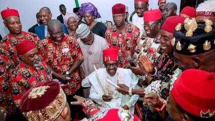 Buhari will hand over to an Igbo president in 2023 - Igwe Nwokedi