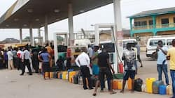 Fuel marketers call on federal government to pay its debt to end fuel scarcity
