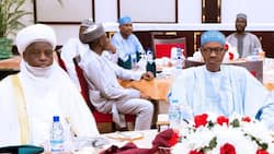 Exposed: The many lies, the half-truths in hajj commission of Nigeria by Ismail Omipidan (opinion)