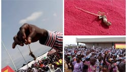 Weird creatures come out of believers during prayer in Niger state (photos)