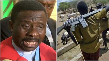 Plateau killngs: Why herdsmen attacks will not end - CAN gives eye-opening reason
