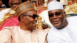 Whatever the ultimate outcome of 2019 elections, Buhari, Atiku must accept it - US don