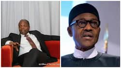 Buhari's absence: Senior Advocates reacts