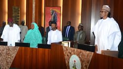 What Nigerian president, govs, spend on security votes yearly - Transparency International
