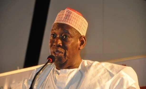 Ganduje a ruwa: Lauyoyi 43 sun sha alwashin taimakawa Daily Nigerian akan Ganduje