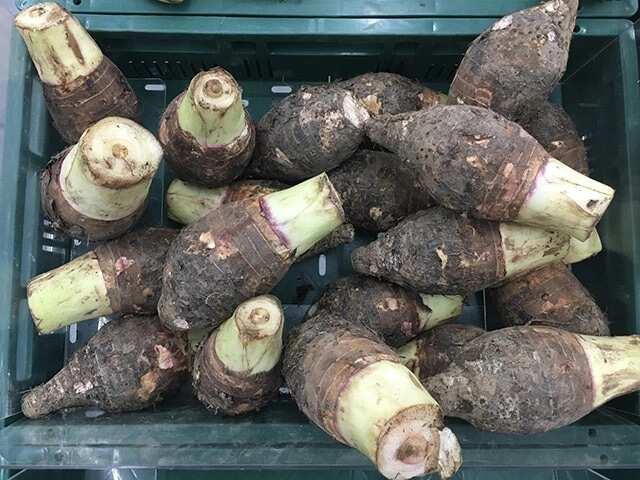 Agbo Jedi Jedi ingredients and recipes