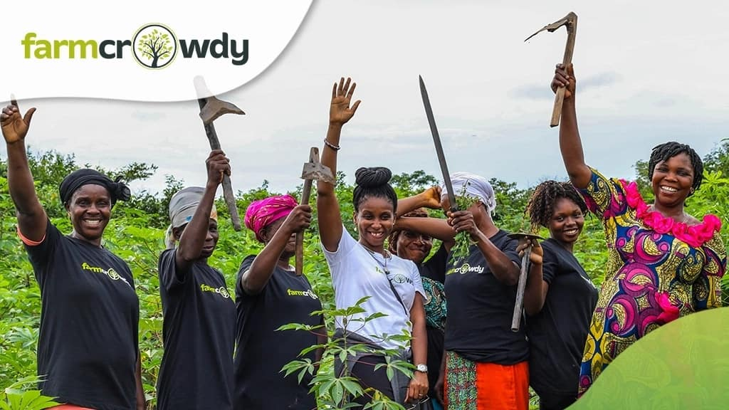 Start farming and avoid stories that touch, find out how this user is maximizing Farmcrowdy
