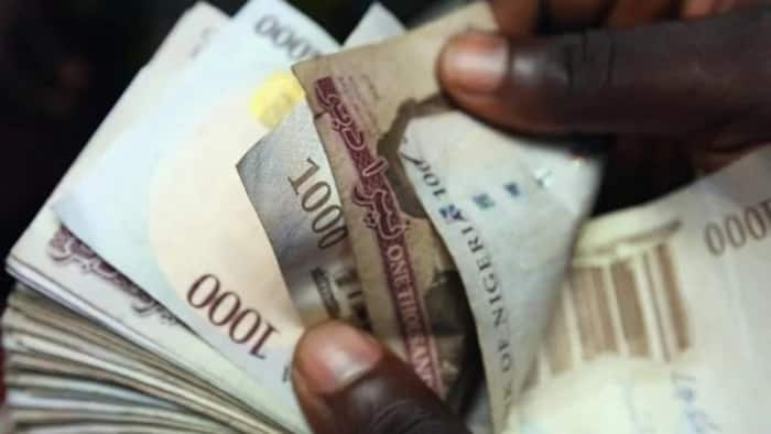 List: Five most effective ways to identify fake naira notes