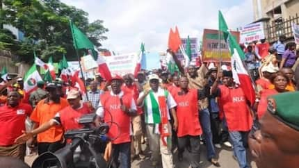 NLC may suspend strike after intervention by presidency