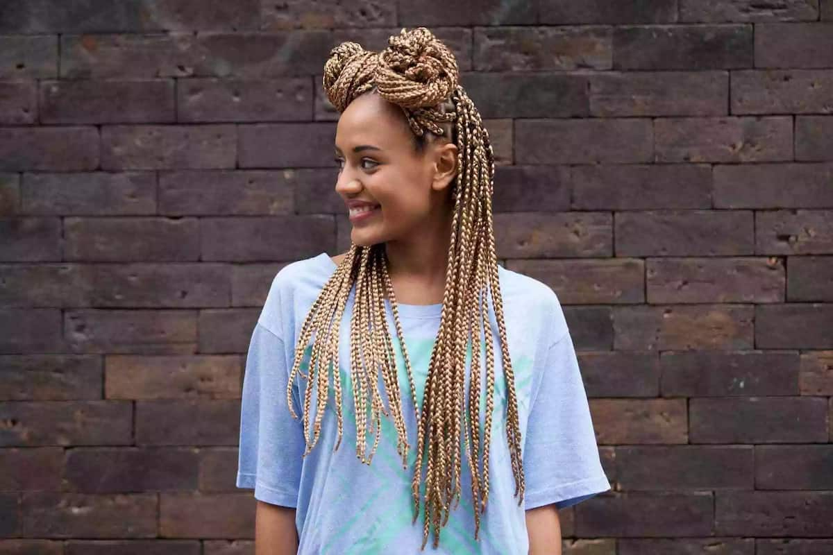 Two buns braids hairstyle