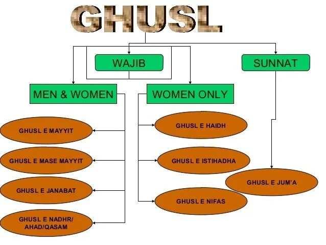 How to Perform Ghusl Janabat ▷ Legit ng