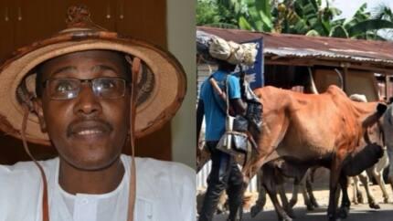 Please be fair to us, Miyetti Allah begs Nigerians