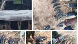 Gunmen attack soldiers on duty; See the tragic thing that happened after (photos)