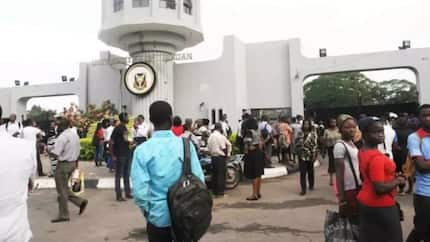 UI International School closes till further notice after female students appear in hijab