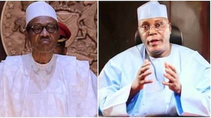 2019 is battle against rogue culture, but Buhari will win - Osita Okechukwu